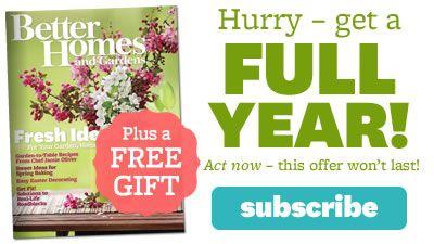 Best 25 Garden Design Software Ideas On Pinterest Free