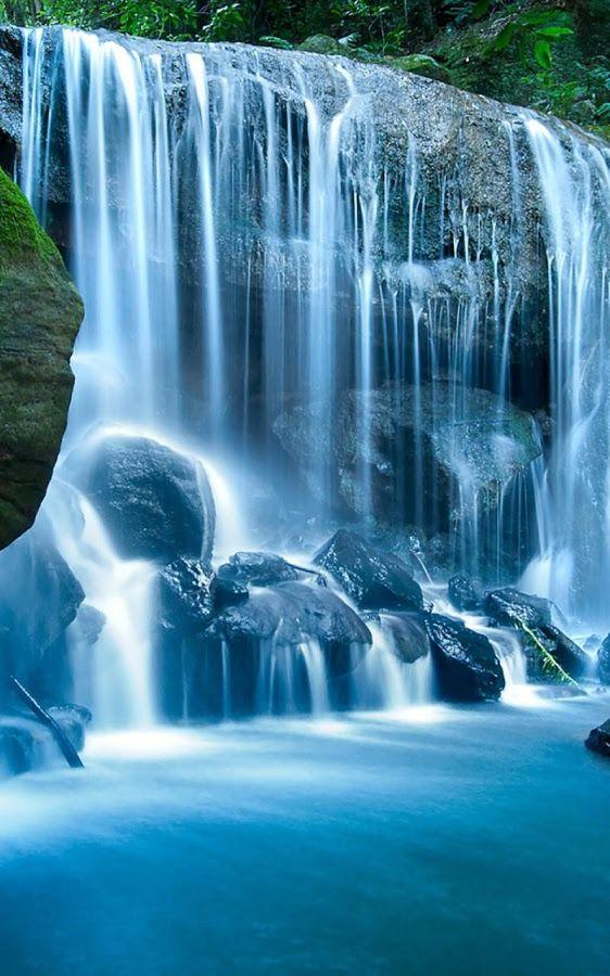 Wild Waterfalls Live Wallpaper