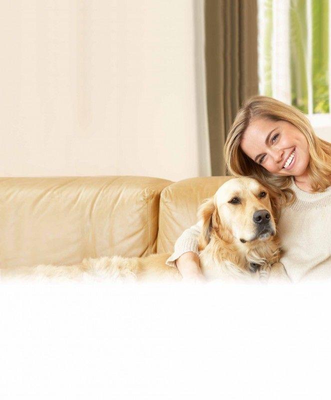 ber ideen zu hund juckreiz auf pinterest hund hausgemachter hund und hundeleckerli. Black Bedroom Furniture Sets. Home Design Ideas