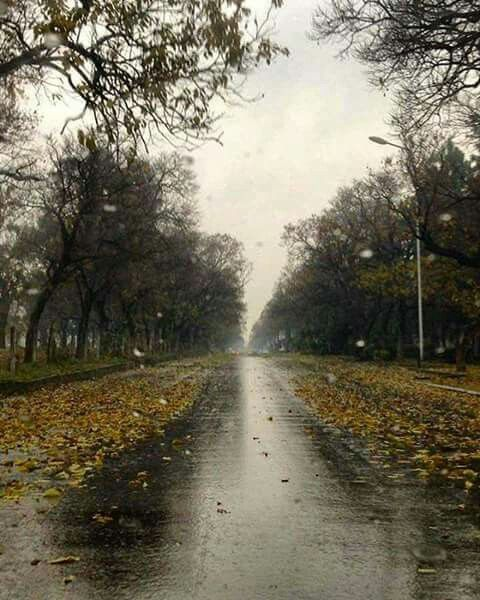 Islamabad Roads: Winter Rain In Islamabad, Photo By Aqib In 2019