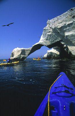 Elephant Arch, Santa Barbara Island, Channel Islands, off ...