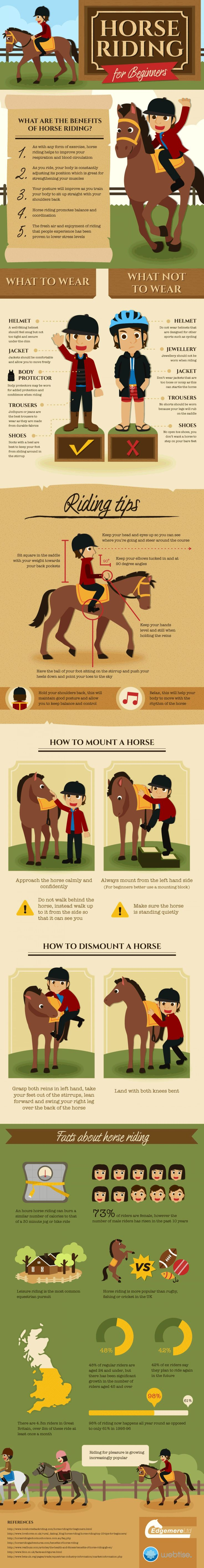 horse riding for beginners pdf