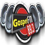 Rádio Gospel FM 89.3 no portal Radios.com.br e no app RadiosNet!
