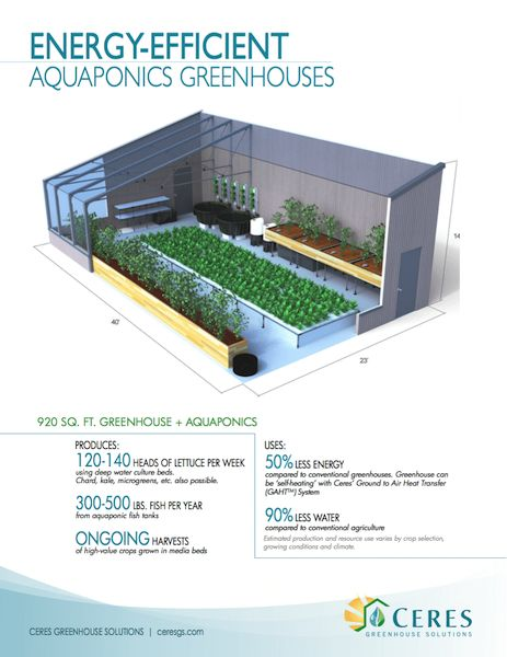 Energy-Efficient Aquaponics Greenhouses | Ceres Greenhouse