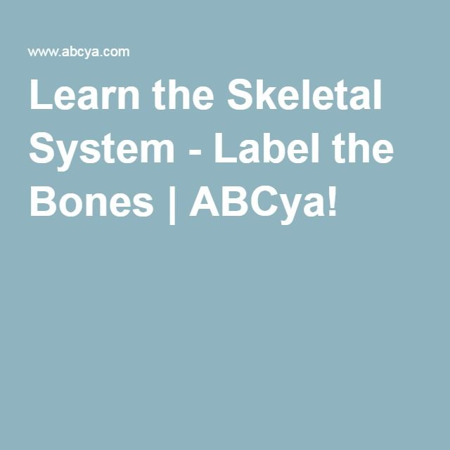 Abcya.com learn the skeletal game - YouTube