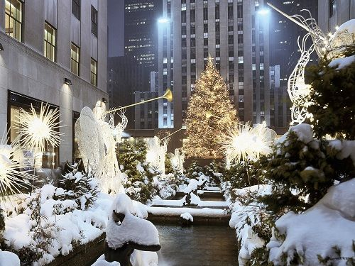 Christmas in New York – Big Apple at its Best - Bing ImagesBuckets Lists, Favorite Places, New York Cities, Rockefeller Center, White Christmas, New York City, Nyc, Newyork, Christmas Trees
