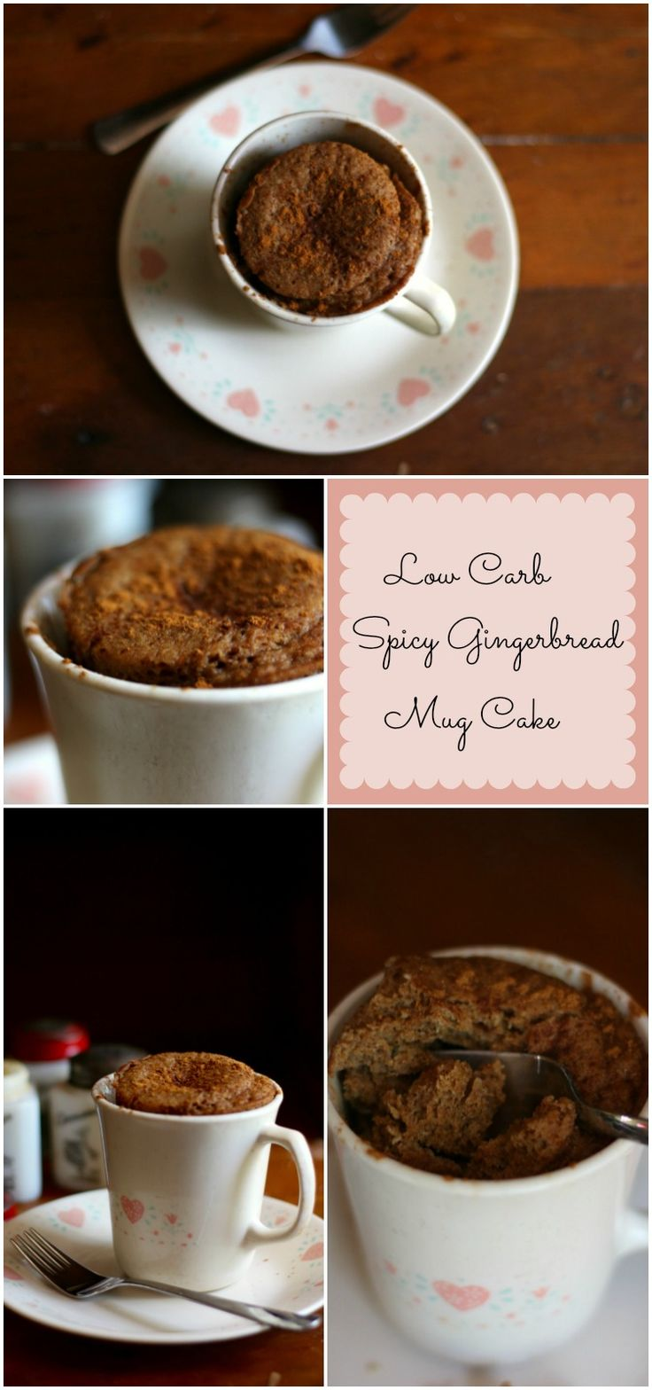Easy to make and easier to eat! This low carb spicy gingerbread mug cake (5.8 net carbs) is full of real gingerbread flavor. From lowcarb-ology.com