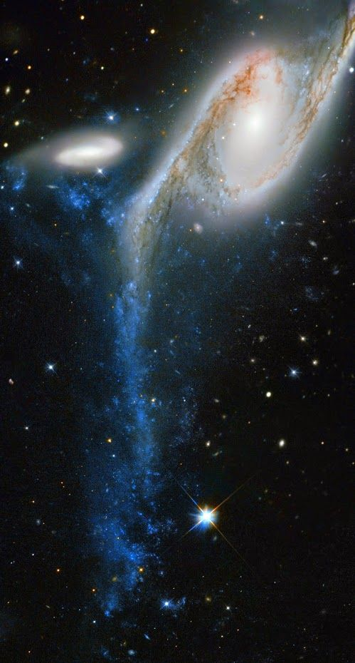 An interacting colossus Name: IC 4970, NGC 6872 Type: • Local Universe : Galaxy : Type : Spiral • Local Universe : Galaxy : Type : Interacting • X - Galaxies Images Distance: 300 million light years Constellation: Pavo Credit: Image credit: ESA/Hubble & NASA