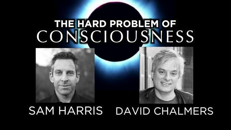 The Hard Problem of Consciousness | David Chalmers and Sam Harris Interview