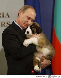 Gawęda jak nasze psy i koty: Władimir Putin i jego ulubione pieski (anegdoty i ...