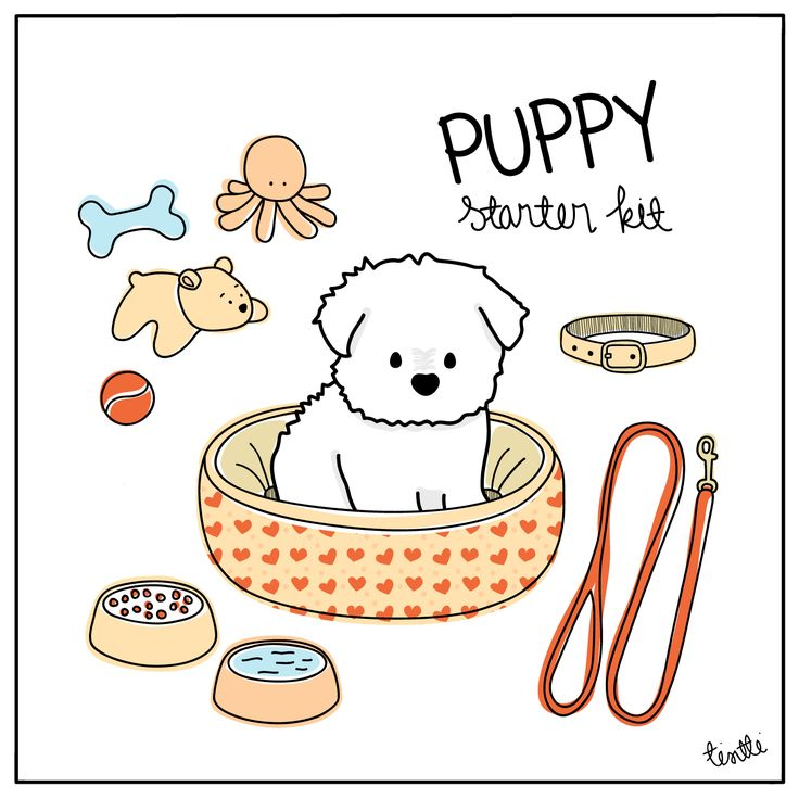 Puppy Starter Kit #puppyillustration