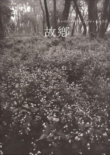 故鄕: 꽃·바다·바위·소나무·숲·오름