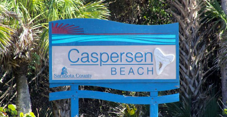 Caspersen Beach stretches over 1½ miles and you can actually reach Manasota Key four miles away if you keep walking south. You'll see shore birds, a great selection of sea shells, and if you're really lucky you may spot the nests of sea turtles. Caspersen Beach Venice, Florida USA. Photo by Nita Ettinger Must Do Visitor Guides, MustDo.com    #floridavacation #beachvacation #travel #floridabeach #travelflorida #familyvacation