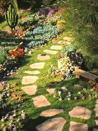 Create a Water-Wise Landscape...don't like the cactus, but I love everything else about this.