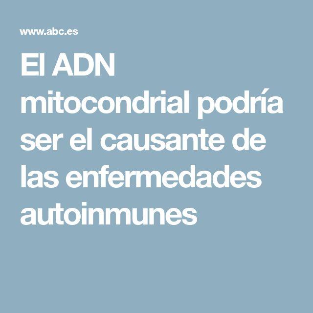 El ADN mitocondrial podría ser el causante de las enfermedades autoinmunes