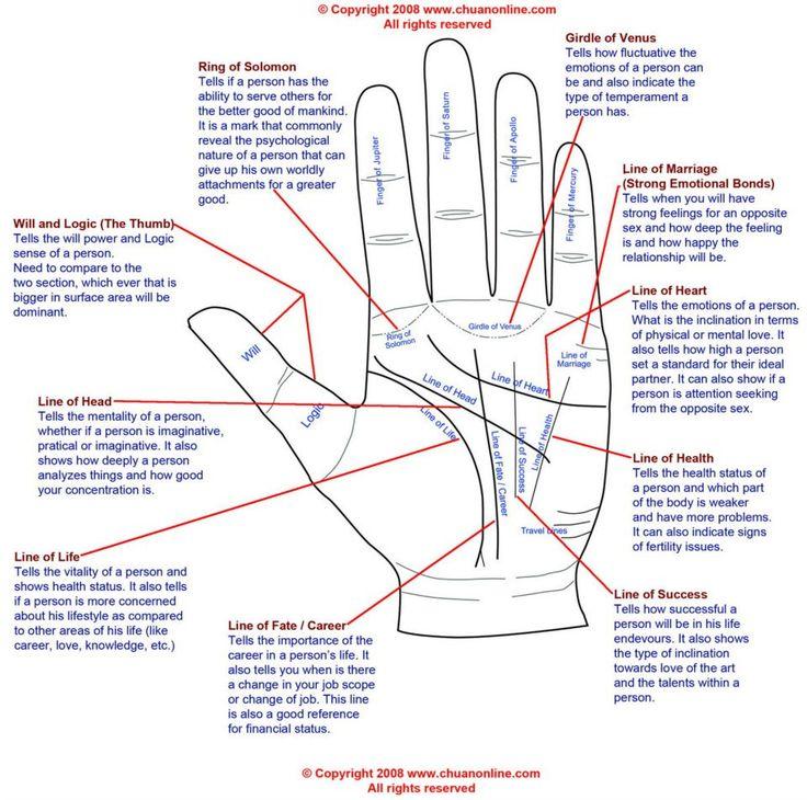 Palm Reading Basics