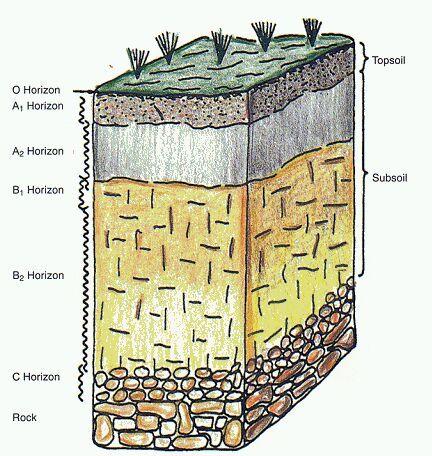 """bearing capacity of soil""的图片搜索结果"