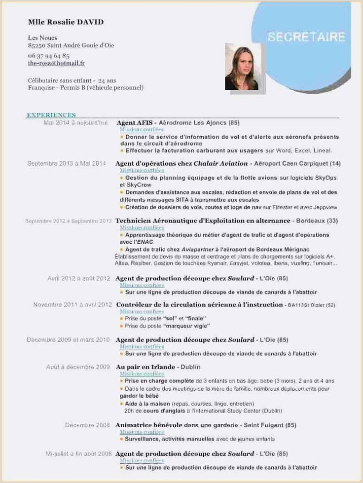 Latest International Standard Cv format