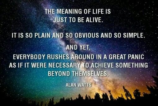 Alan Watts quote Words To Live By Pinterest Quotes