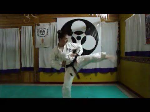 Shinshinkan Karate Do - Kihon  Sensei Cristian Soto 3er Dan  and Students - Argentina
