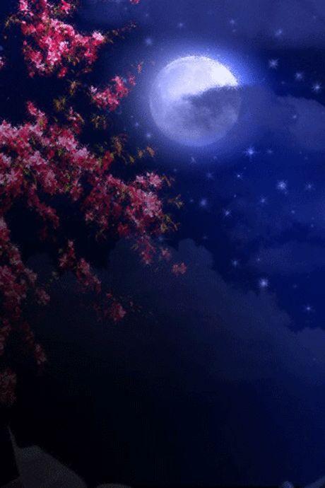 Картинки анимация на ночь