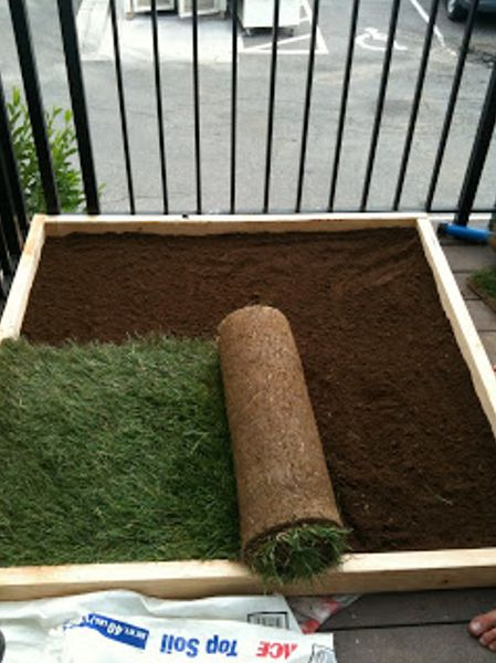 DIY grassy area on the balcony for pets