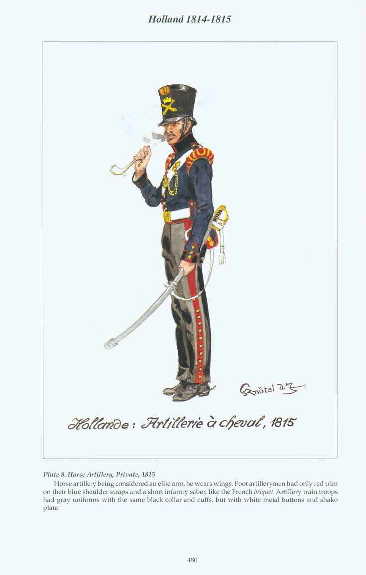 Holland: Plate 8. Horse Artillery, Private, 1815