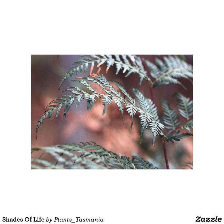 Shades Of Life Canvas Print   Zazzle