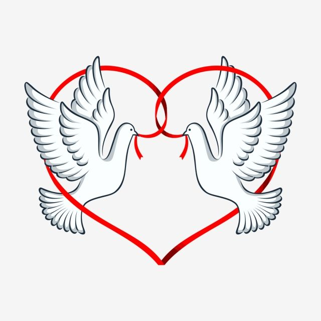 Dove In Love Couple Pigeon Dove Png And Vector With Transparent Background For Free Download Flower Stencil Patterns Love Png Love Birds Wedding