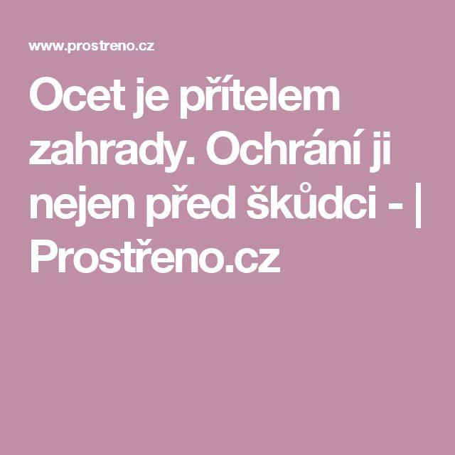 Ocet je přítelem zahrady. Ochrání ji nejen před škůdci - | Prostřeno.cz