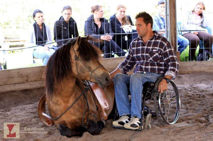 73 best images about EQUINE THERAPY on Pinterest