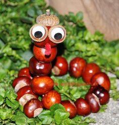 Klik ind og se min brilleslange af kastanjer: http://agnesingersen.dk/blog/brilleslange. Easy kids crafts chestnut - Kinderbastelideen Kastanien