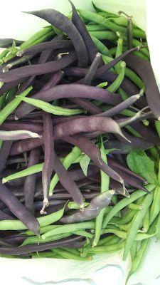 Berber tuiniert: courgette inmaken in zoetzuur, recept.