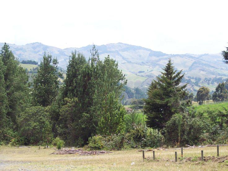 """2-Paisaje sonsoneño. Desde UdeA. Pero, más que """"paisaje"""", un teritorio..."""