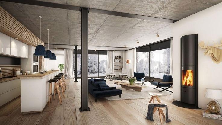 offener Wohnraum modern eingerichtet mit Kamin