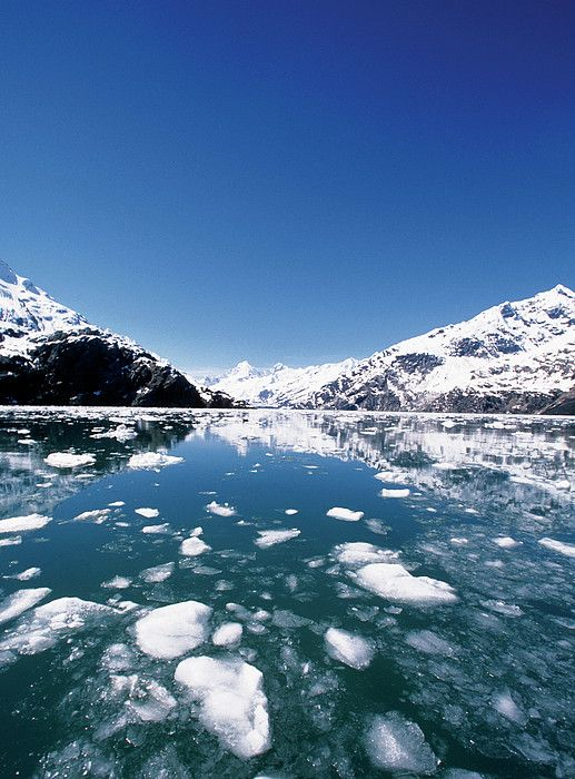 John Hopkins Glacier, Glacier Bay National Park and Preserve, Alaska