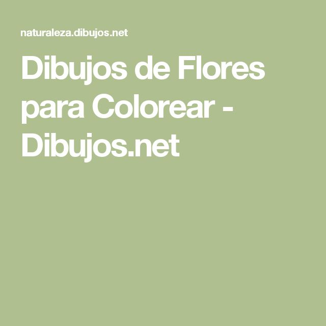Worksheet. Ms de 25 ideas increbles sobre Dibujos de flores en Pinterest