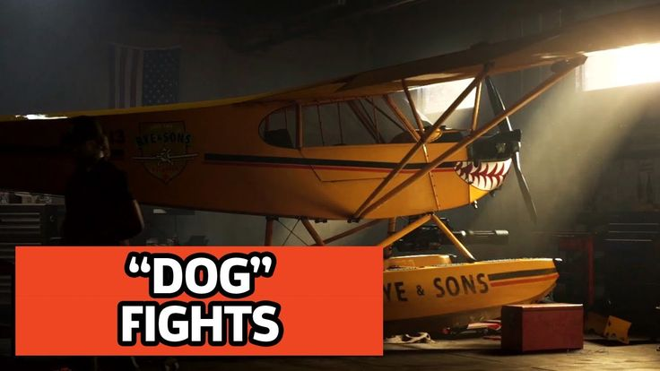 farcry5gamer.comFlying The Not Friendly Skies In Far Cry 5 - 4K  Gameplay After liberating Falls End we explore some of what Far Cry 5 has to offer in sweet 4K. Hunting bears, going fishing and getting into dog fights.  Watch our breakdown of the first Far Cry 5 trailer:   Far Cry 5 Announcement Trailer:   Follow Far Cry 5 at GameSpot.com!  Official Site -   Subscribehttp://farcry5gamer.com/flying-the-not-friendly-skies-in-far-cry-5-4k-gameplay/