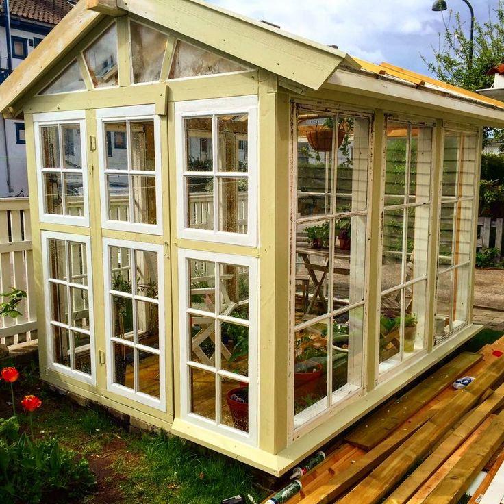 Greenhouse,Drivhus,Kristiansand  Robert Strandberg