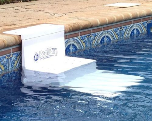 Poolpup in ground above pet dog pool safety steps