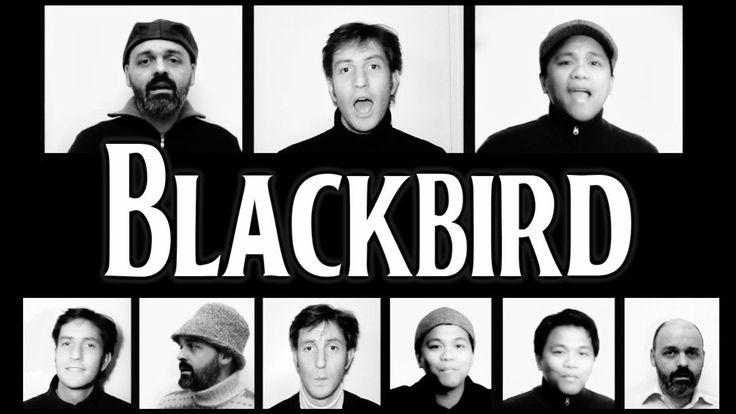 Blackbird (The Beatles) - A Cappella cover (+playlist)
