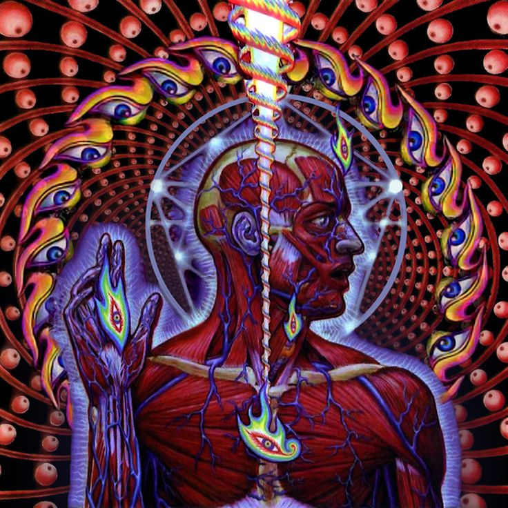 Tool - Lateralus By Alex Grey