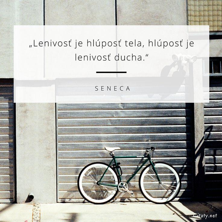Lenivosť je hlúposť tela, hlúposť je lenivosť ducha. -  Seneca #hlúposť