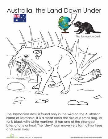 Worksheets: Tasmanian Devil