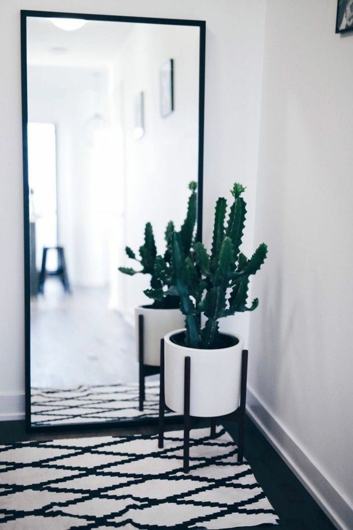 Foyer with large black trimmed mirror, black and white rug and white planter