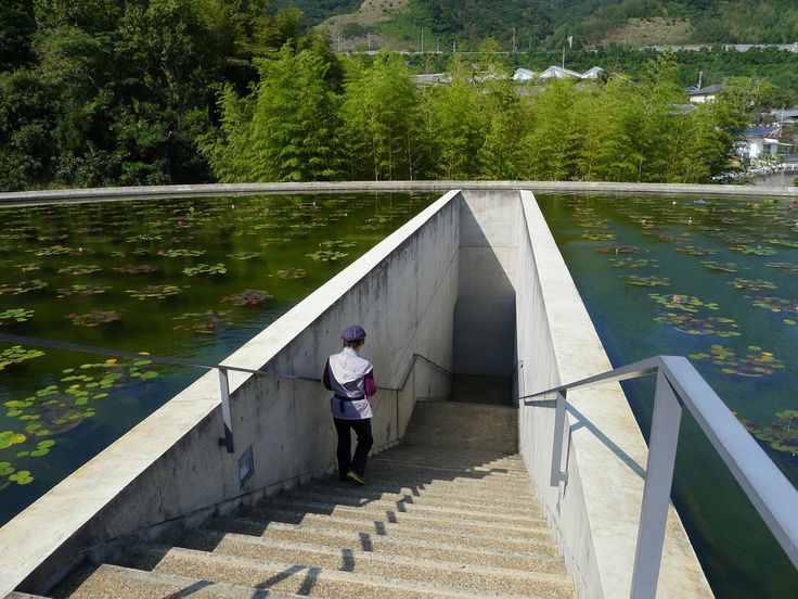 lotus pond entrance to the below ground Honpuku-ji, the Water Temple by Tadao Ando