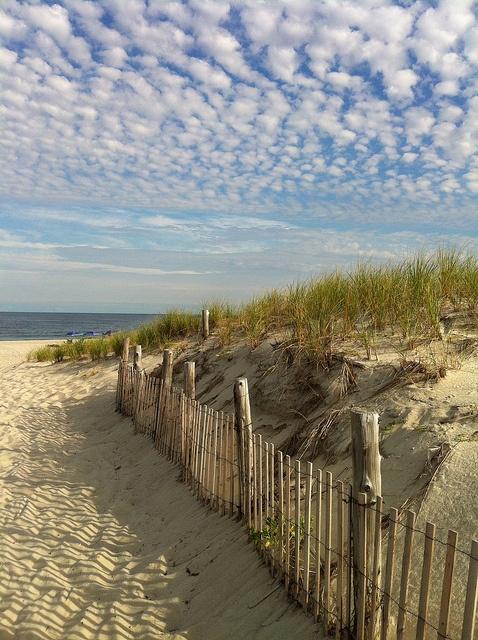 The beautiful sand and sea!