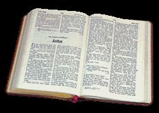 Bible Commentary on Job:   Free Bible commentary and study   notes on the Old Testament book of wisdom, poetry, and literature: Job. Comments and helps verse by verse to give knowledge of God's word and answers to questions about Scripture