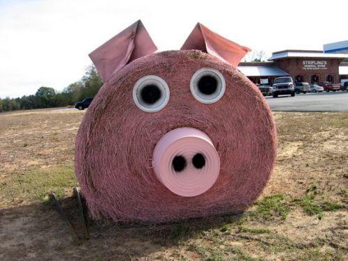 Hay Bale Art Sculptures | Hay bale pig