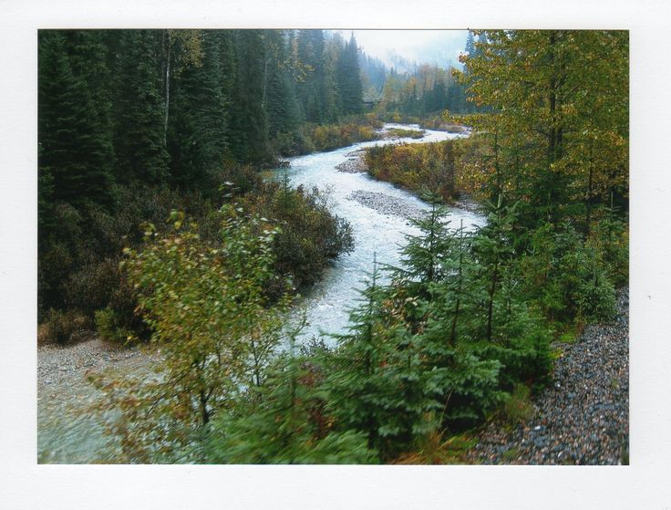 From the Rocky Mountaineer in British Columbia